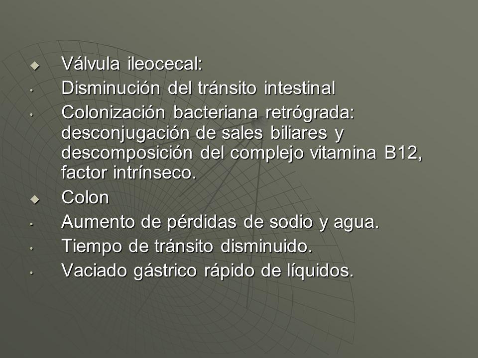 Válvula ileocecal: Válvula ileocecal: Disminución del tránsito intestinal Disminución del tránsito intestinal Colonización bacteriana retrógrada: desc