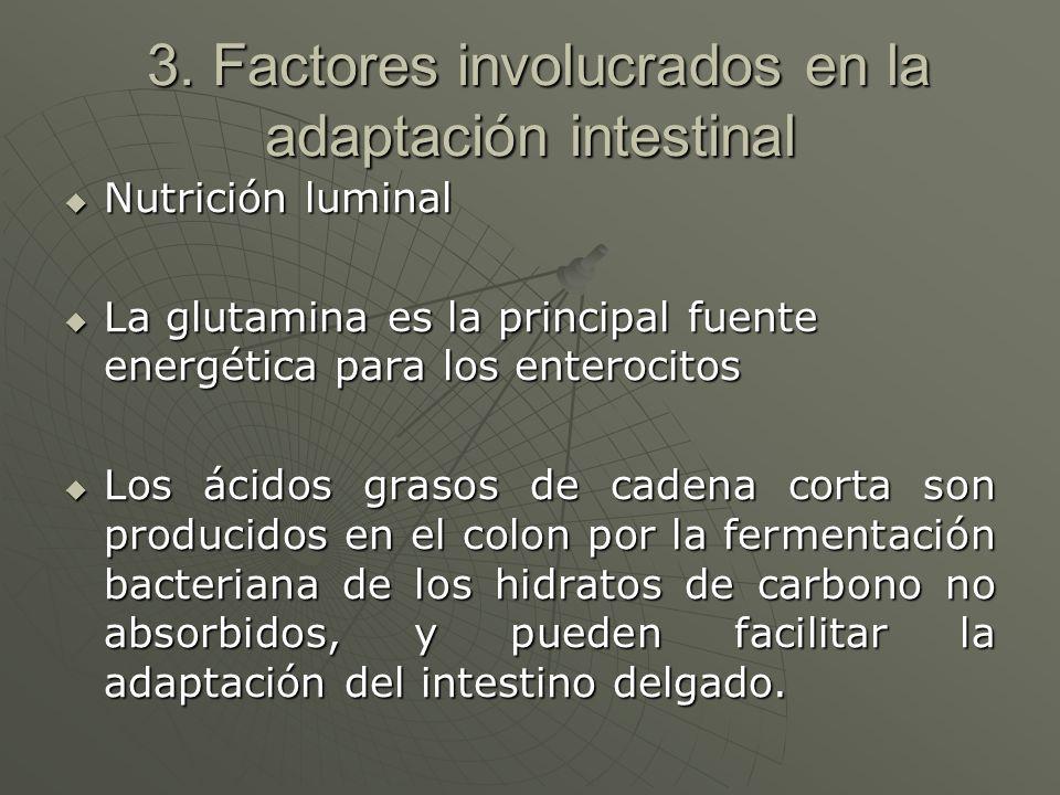 3. Factores involucrados en la adaptación intestinal 3. Factores involucrados en la adaptación intestinal Nutrición luminal Nutrición luminal La gluta