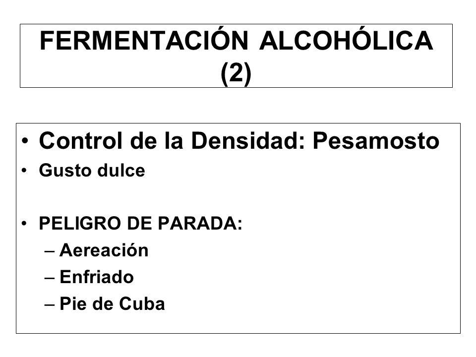 FERMENTACIÓN ALCOHÓLICA (1) Control de la TEMPERATURA: Ideal : 22ºC - 28 ºC Práctico: en Ica : 28ºC - 35ºC y más –Termómetro Medios de Control: –Bombe