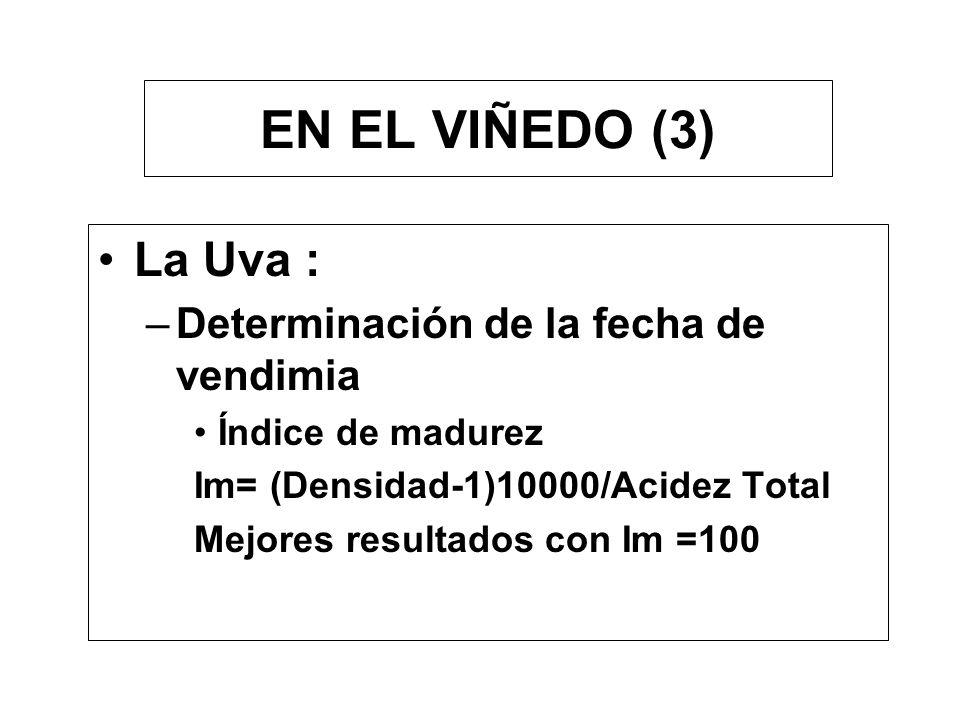 EN EL VIÑEDO (3) La Uva : –Determinación de la fecha de vendimia Índice de madurez Im= (Densidad-1)10000/Acidez Total Mejores resultados con Im =100