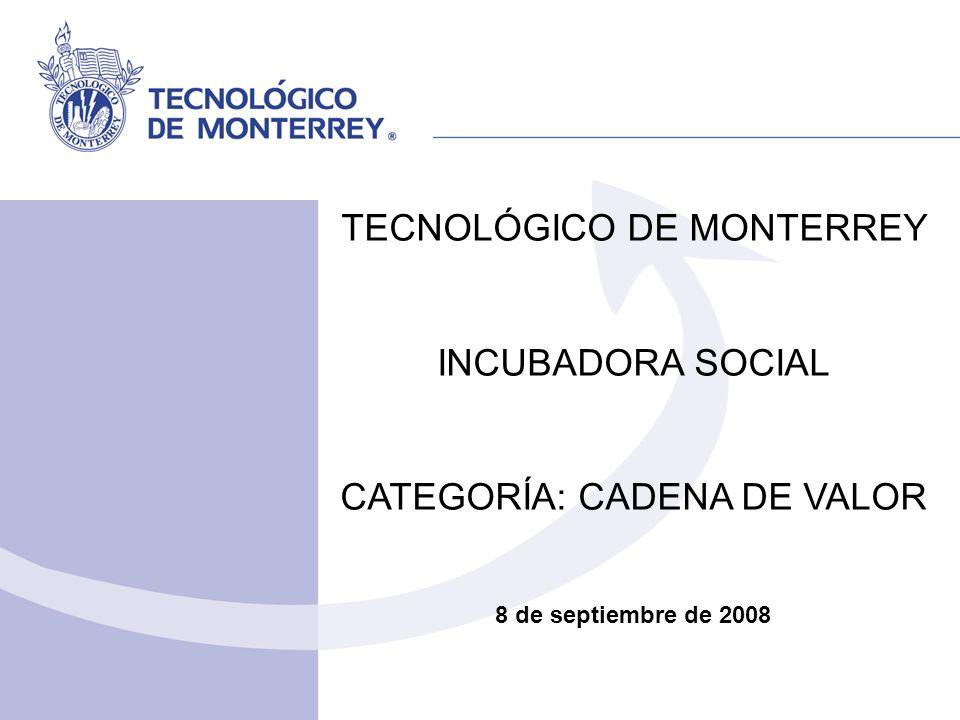 TECNOLÓGICO DE MONTERREY INCUBADORA SOCIAL CATEGORÍA: CADENA DE VALOR 8 de septiembre de 2008