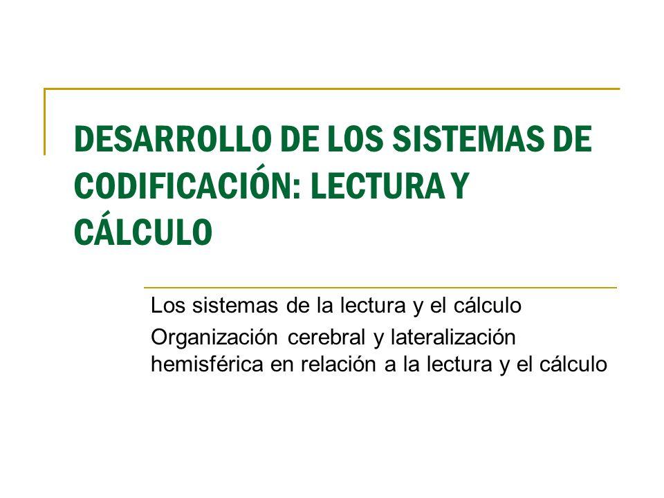 DESARROLLO DE LOS SISTEMAS DE CODIFICACIÓN: LECTURA Y CÁLCULO Los sistemas de la lectura y el cálculo Organización cerebral y lateralización hemisféri