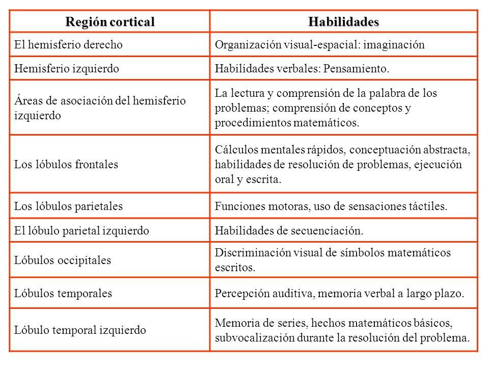 Región cortical Habilidades El hemisferio derechoOrganización visual-espacial: imaginación Hemisferio izquierdoHabilidades verbales: Pensamiento. Área