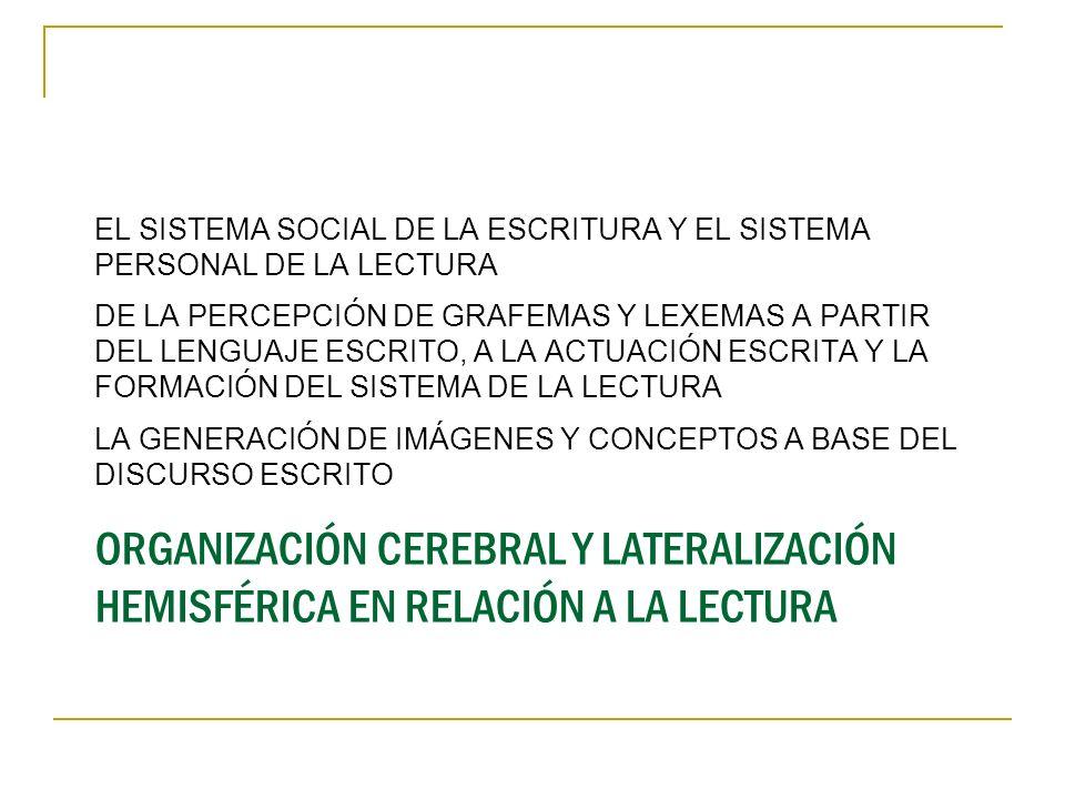 ORGANIZACIÓN CEREBRAL Y LATERALIZACIÓN HEMISFÉRICA EN RELACIÓN A LA LECTURA EL SISTEMA SOCIAL DE LA ESCRITURA Y EL SISTEMA PERSONAL DE LA LECTURA DE L