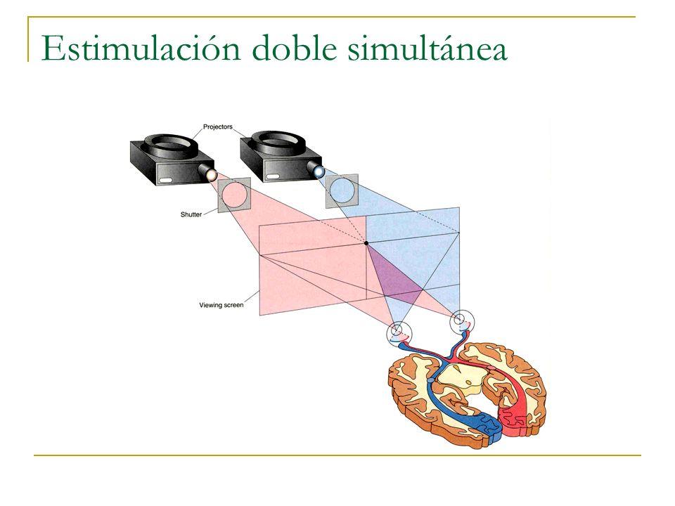 Estimulación doble simultánea