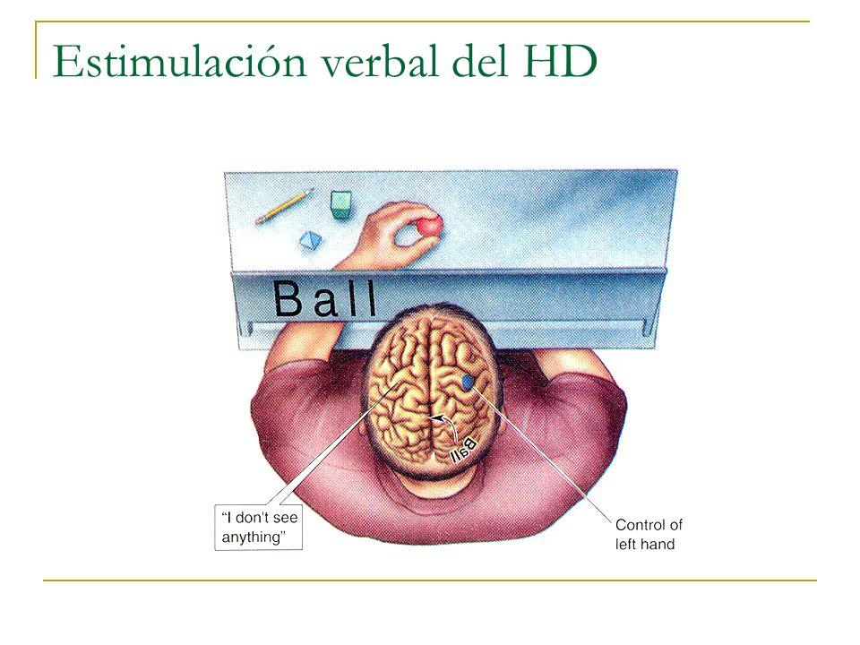 Estimulación verbal del HD