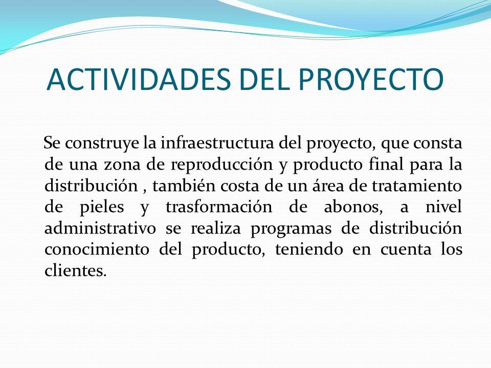 ACTIVIDADES DEL PROYECTO Se construye la infraestructura del proyecto, que consta de una zona de reproducción y producto final para la distribución, t