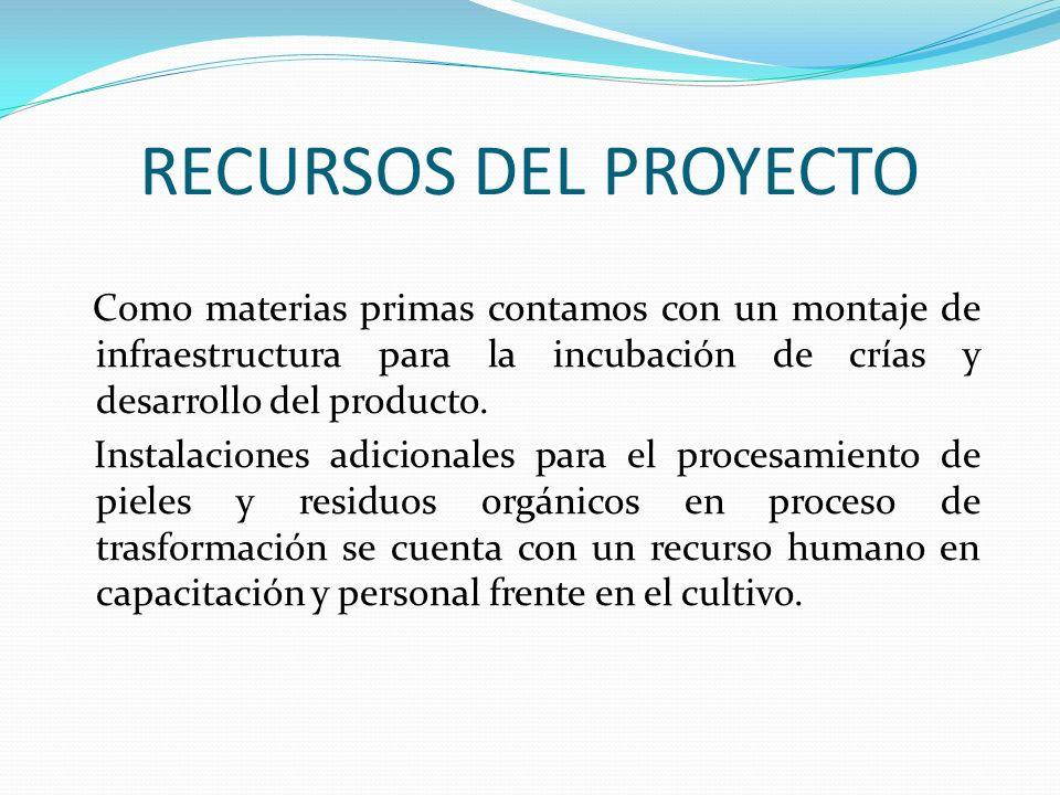 RECURSOS DEL PROYECTO Como materias primas contamos con un montaje de infraestructura para la incubación de crías y desarrollo del producto. Instalaci
