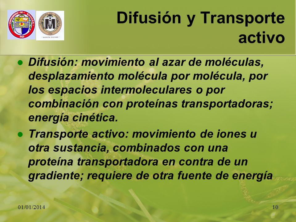 01/01/201410 Difusión y Transporte activo Difusión: movimiento al azar de moléculas, desplazamiento molécula por molécula, por los espacios intermolec