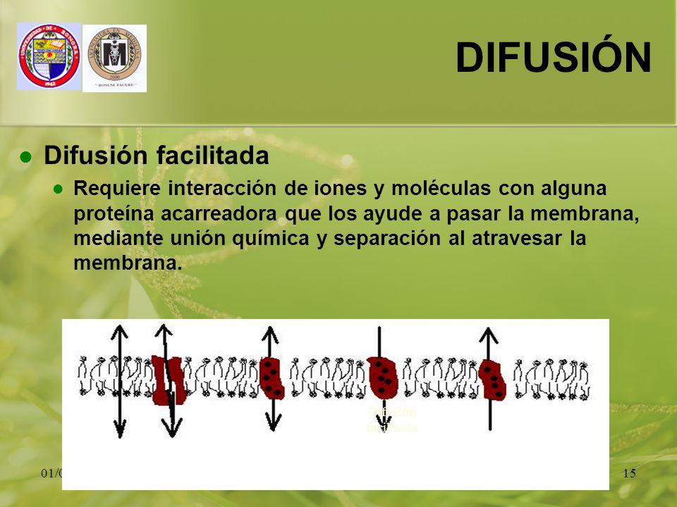 01/01/201415 DIFUSIÓN Difusión facilitada Requiere interacción de iones y moléculas con alguna proteína acarreadora que los ayude a pasar la membrana,