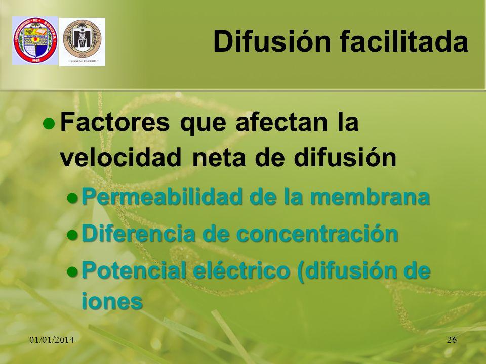 01/01/201426 Difusión facilitada Factores que afectan la velocidad neta de difusión Permeabilidad de la membrana Permeabilidad de la membrana Diferenc