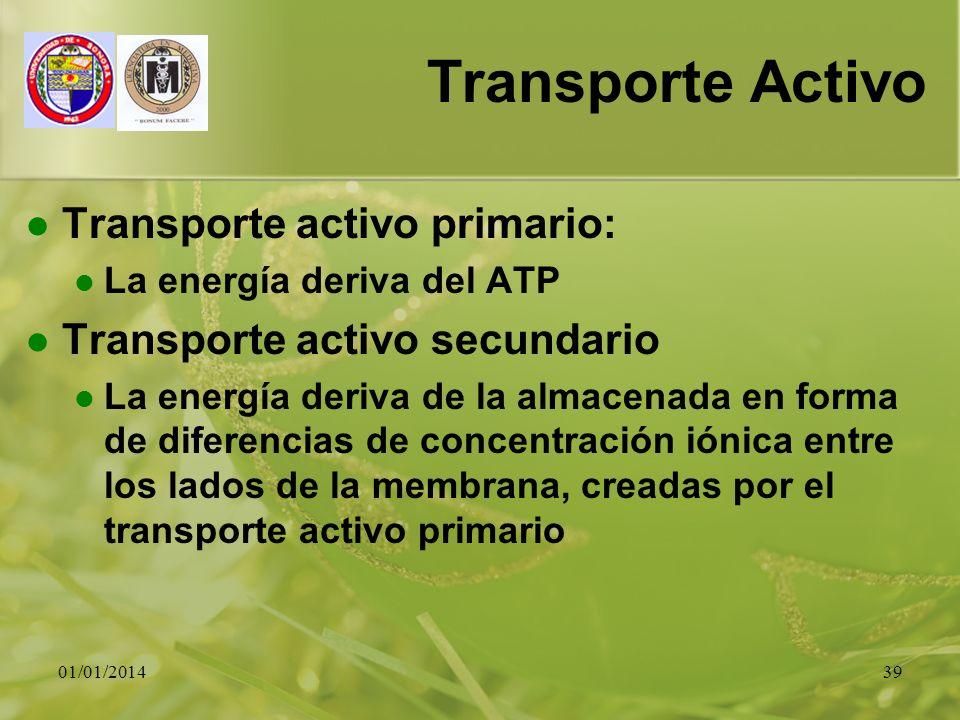 01/01/201439 Transporte Activo Transporte activo primario: La energía deriva del ATP Transporte activo secundario La energía deriva de la almacenada e