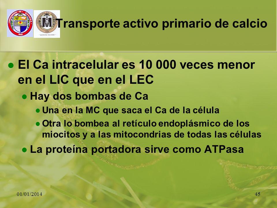 01/01/201445 Transporte activo primario de calcio El Ca intracelular es 10 000 veces menor en el LIC que en el LEC Hay dos bombas de Ca Una en la MC q
