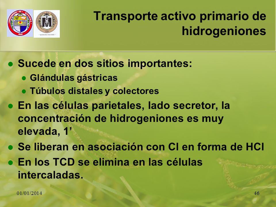 01/01/201446 Transporte activo primario de hidrogeniones Sucede en dos sitios importantes: Glándulas gástricas Túbulos distales y colectores En las cé
