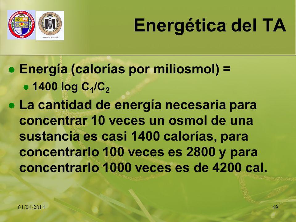 01/01/201449 Energética del TA Energía (calorías por miliosmol) = 1400 log C 1 /C 2 La cantidad de energía necesaria para concentrar 10 veces un osmol