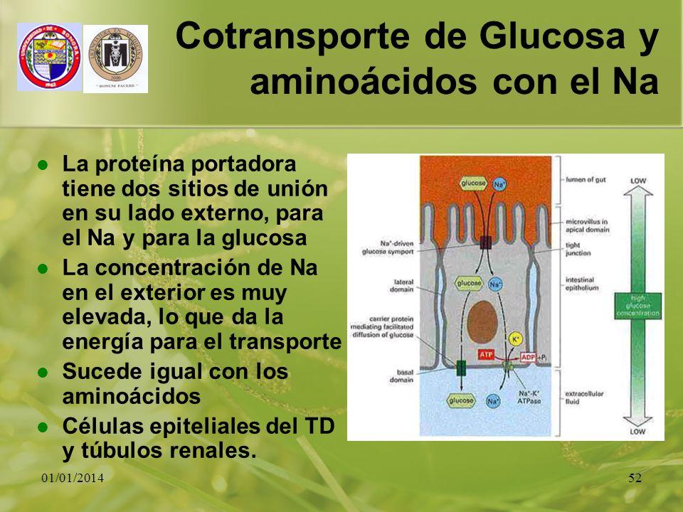 01/01/201452 Cotransporte de Glucosa y aminoácidos con el Na La proteína portadora tiene dos sitios de unión en su lado externo, para el Na y para la