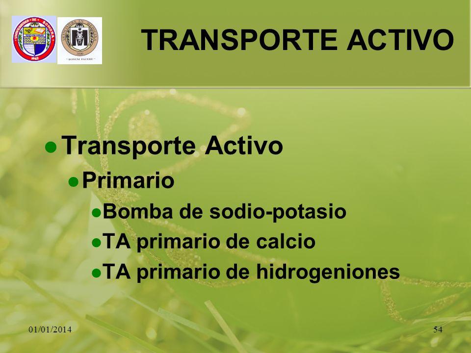 01/01/201454 TRANSPORTE ACTIVO Transporte Activo Primario Bomba de sodio-potasio TA primario de calcio TA primario de hidrogeniones