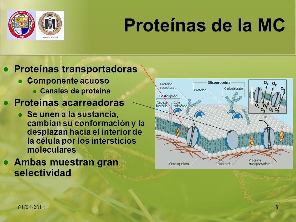 01/01/20148 Proteínas de la MC Proteínas transportadoras Componente acuoso Canales de proteína Proteínas acarreadoras Se unen a la sustancia, cambian