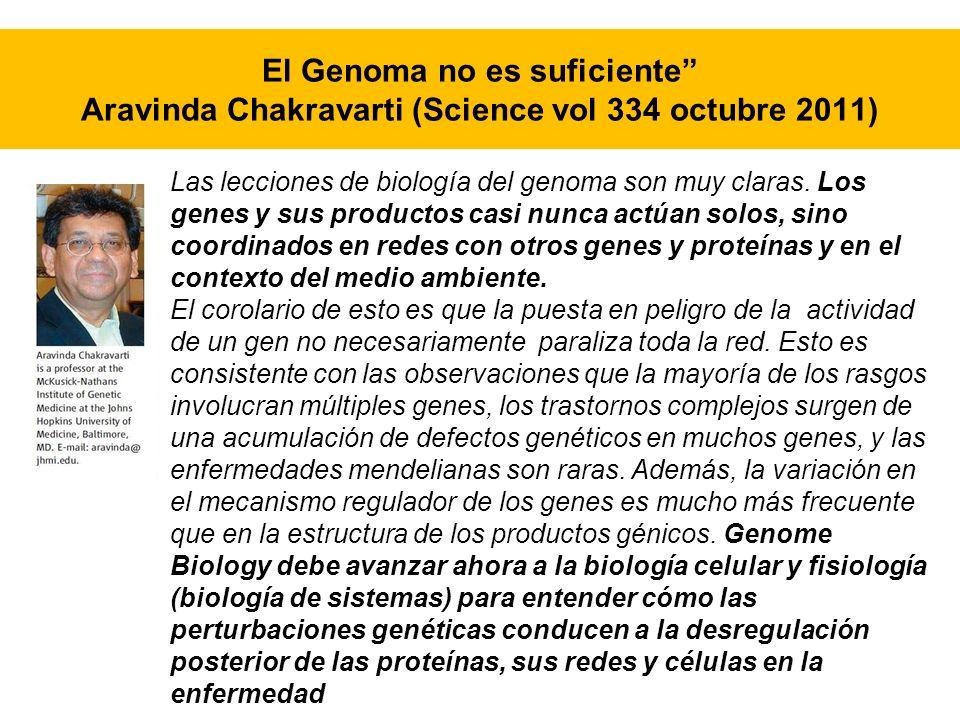 Las lecciones de biología del genoma son muy claras. Los genes y sus productos casi nunca actúan solos, sino coordinados en redes con otros genes y pr