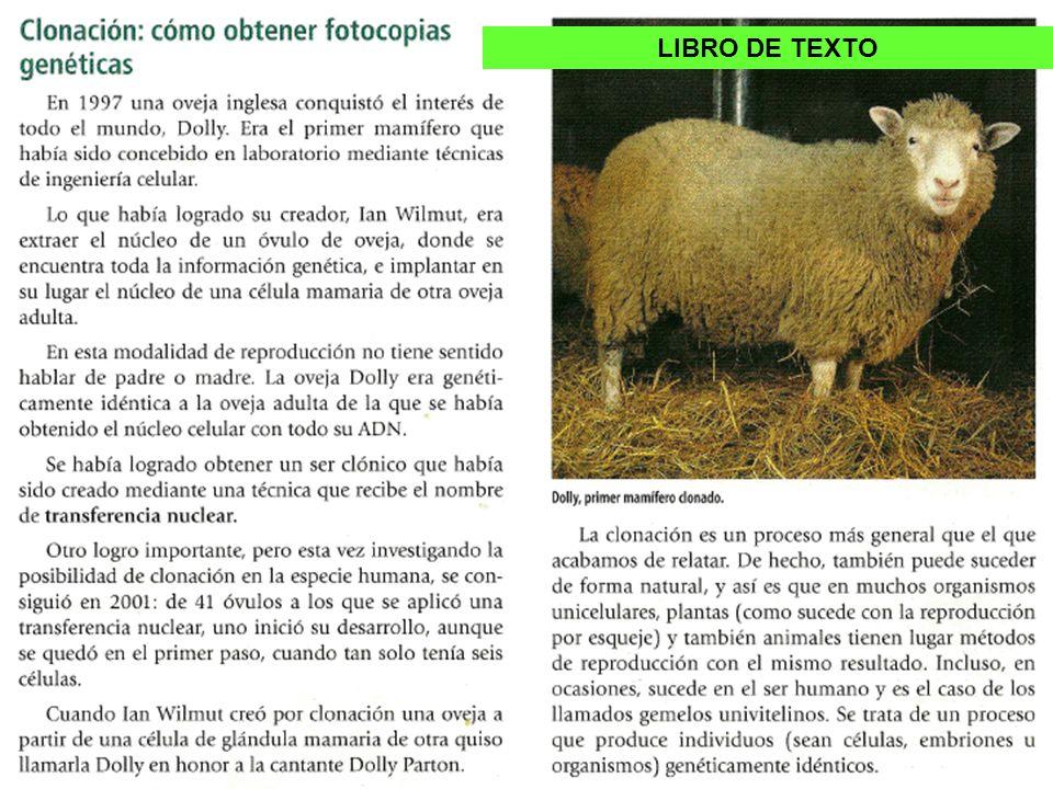 Sobre la clonación En todos los libros de texto se hace referencia al caso de la oveja Dolly y en muchos se compara con la reproducción vegetativa intentando dar a la clonación un aspecto de legalidad natural.