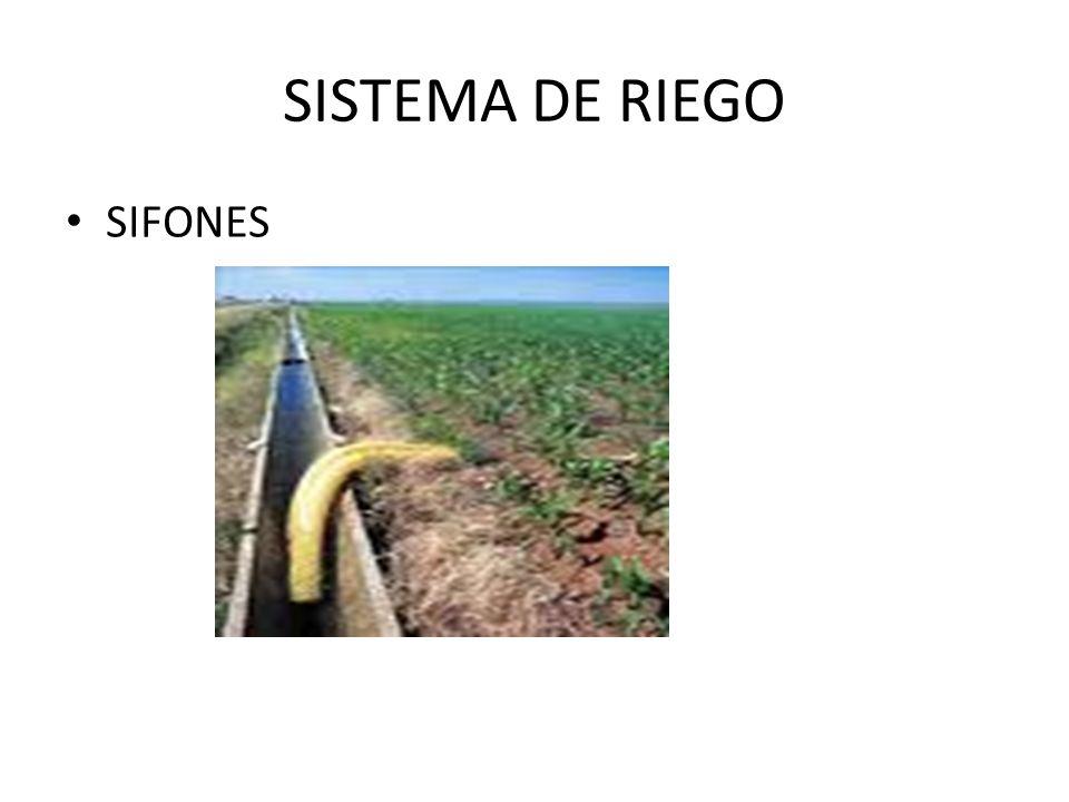 SISTEMA DE RIEGO SIFONES