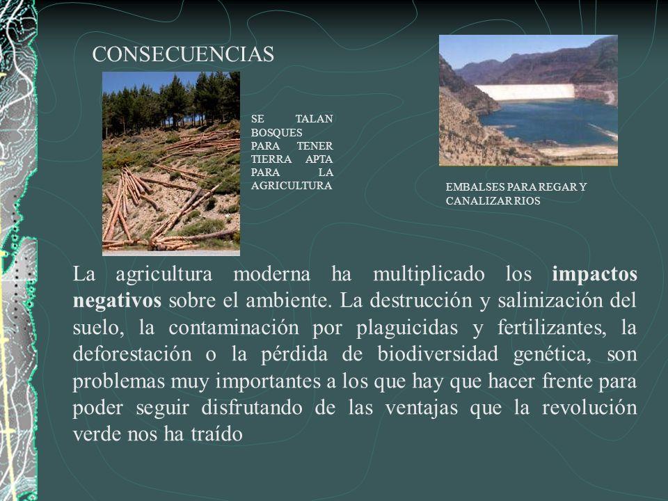 La agricultura moderna ha multiplicado los impactos negativos sobre el ambiente. La destrucción y salinización del suelo, la contaminación por plaguic