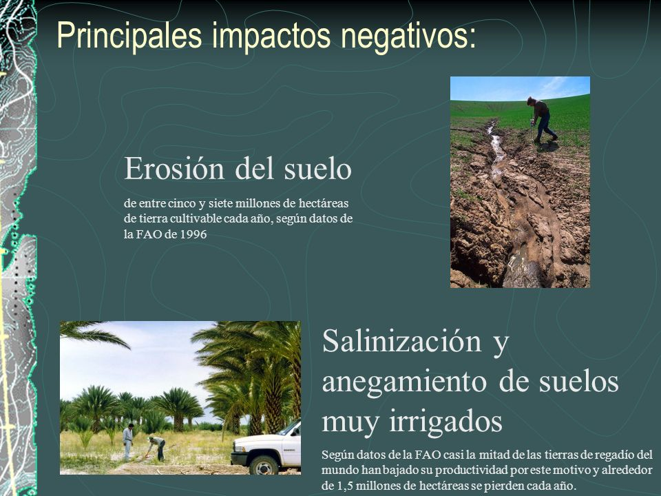 Principales impactos negativos: Erosión del suelo de entre cinco y siete millones de hectáreas de tierra cultivable cada año, según datos de la FAO de