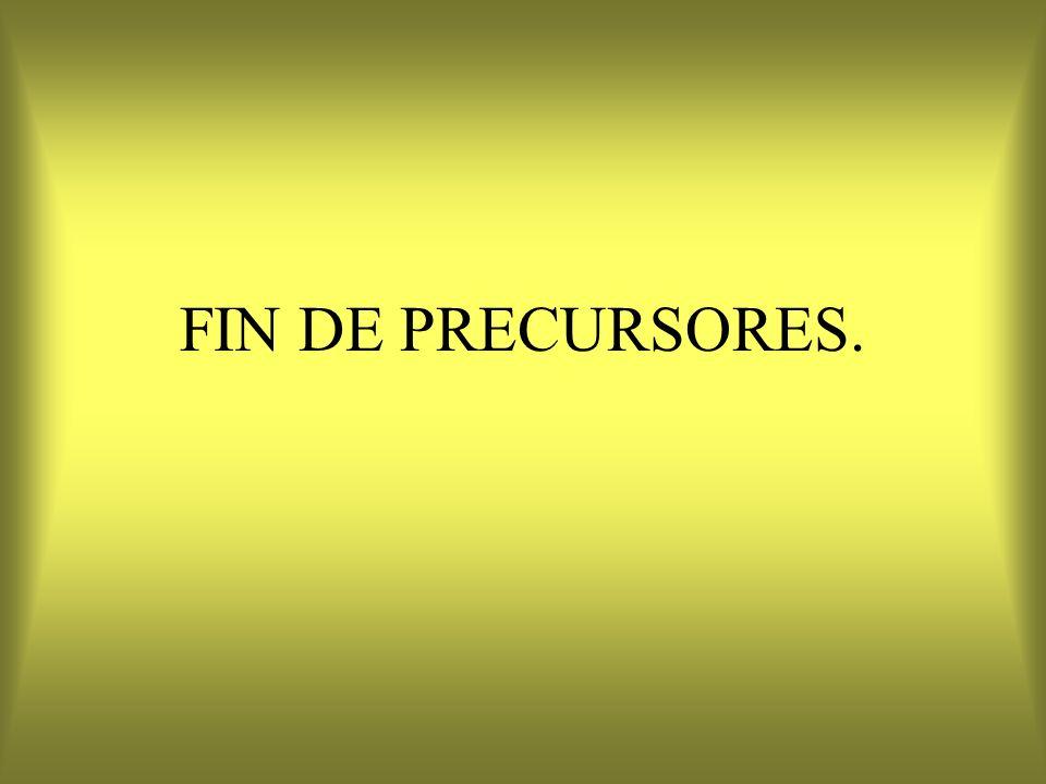FIN DE PRECURSORES.