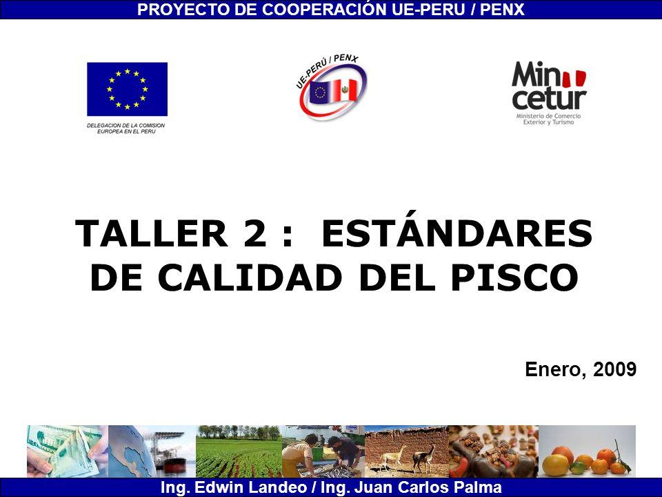 TALLER 2 : ESTÁNDARES DE CALIDAD DEL PISCO Enero, 2009 PROYECTO DE COOPERACIÓN UE-PERU / PENX Ing. Edwin Landeo / Ing. Juan Carlos Palma