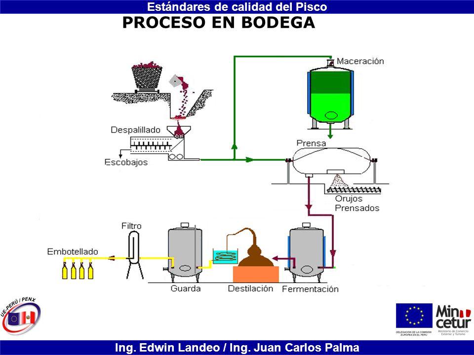 Estándares de calidad del Pisco Ing. Edwin Landeo / Ing. Juan Carlos Palma PROCESO EN BODEGA