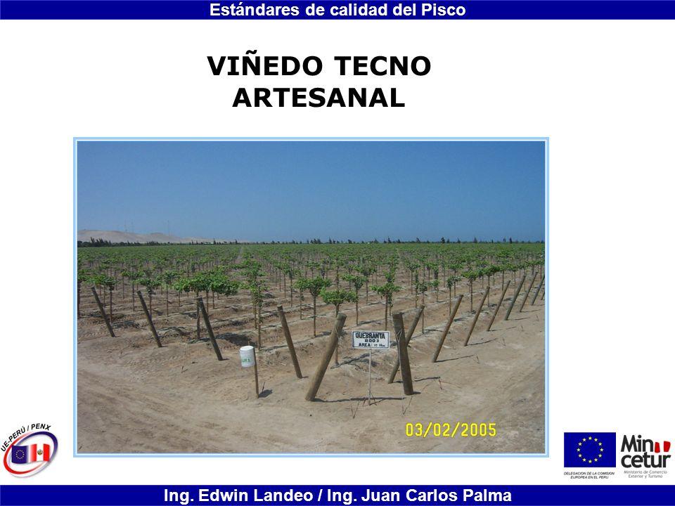 Estándares de calidad del Pisco Ing. Edwin Landeo / Ing. Juan Carlos Palma VIÑEDO TECNO ARTESANAL