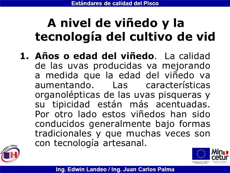 Estándares de calidad del Pisco Ing. Edwin Landeo / Ing. Juan Carlos Palma A nivel de viñedo y la tecnología del cultivo de vid 1.Años o edad del viñe
