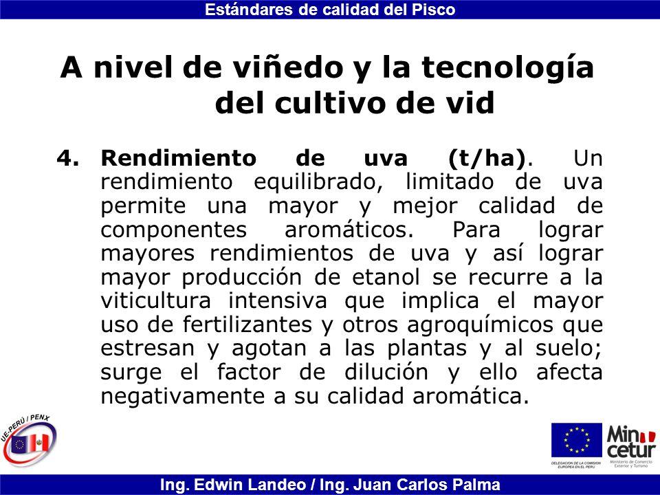 Estándares de calidad del Pisco Ing. Edwin Landeo / Ing. Juan Carlos Palma A nivel de viñedo y la tecnología del cultivo de vid 4.Rendimiento de uva (