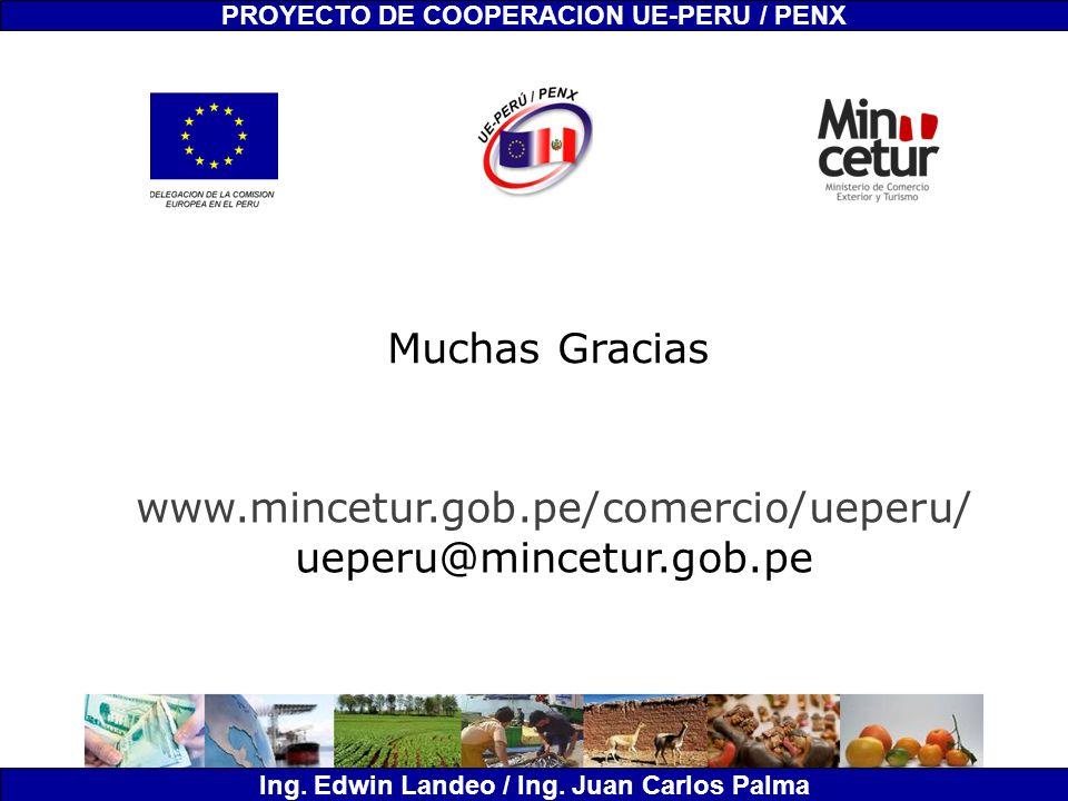 PROYECTO DE COOPERACION UE-PERU / PENX Ing. Edwin Landeo / Ing. Juan Carlos Palma Muchas Gracias www.mincetur.gob.pe/comercio/ueperu/ ueperu@mincetur.