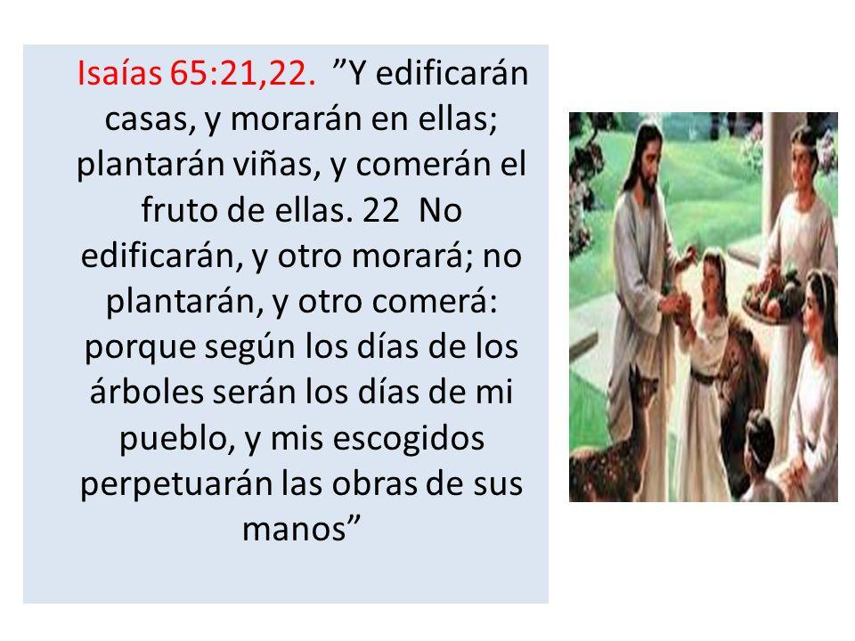 Isaías 65:21,22. Y edificarán casas, y morarán en ellas; plantarán viñas, y comerán el fruto de ellas. 22 No edificarán, y otro morará; no plantarán,