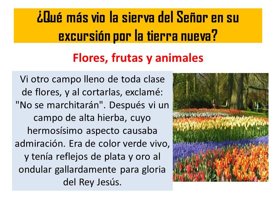 ¿Qué más vio la sierva del Señor en su excursión por la tierra nueva? Flores, frutas y animales Vi otro campo lleno de toda clase de flores, y al cort