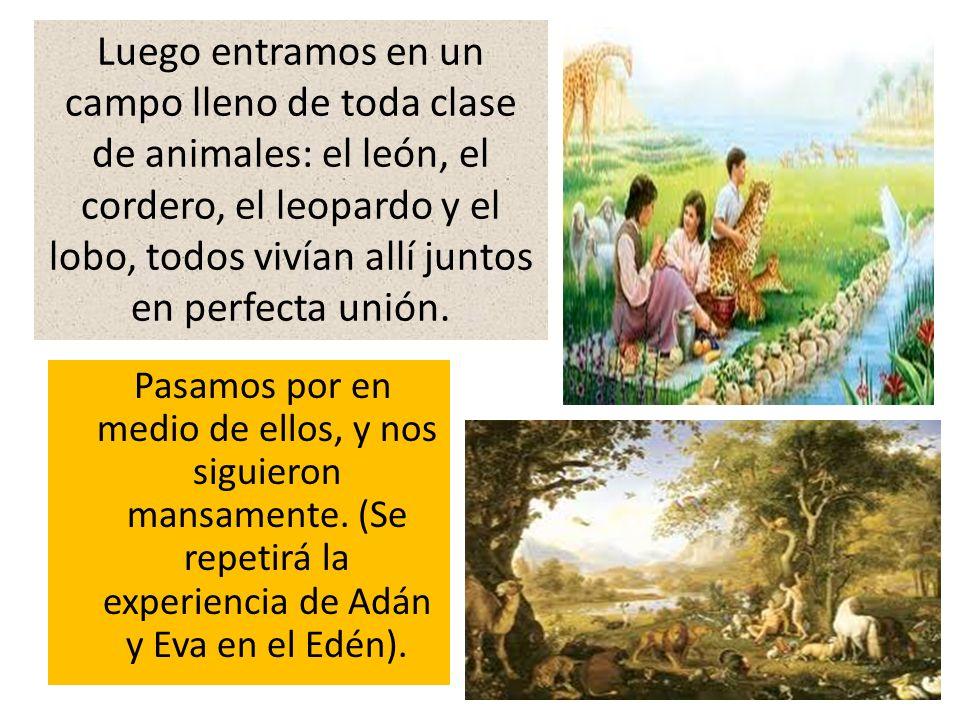 Pasamos por en medio de ellos, y nos siguieron mansamente. (Se repetirá la experiencia de Adán y Eva en el Edén). Luego entramos en un campo lleno de