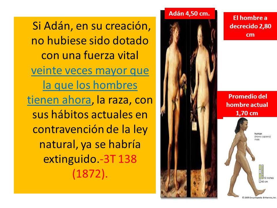 Si Adán, en su creación, no hubiese sido dotado con una fuerza vital veinte veces mayor que la que los hombres tienen ahora, la raza, con sus hábitos
