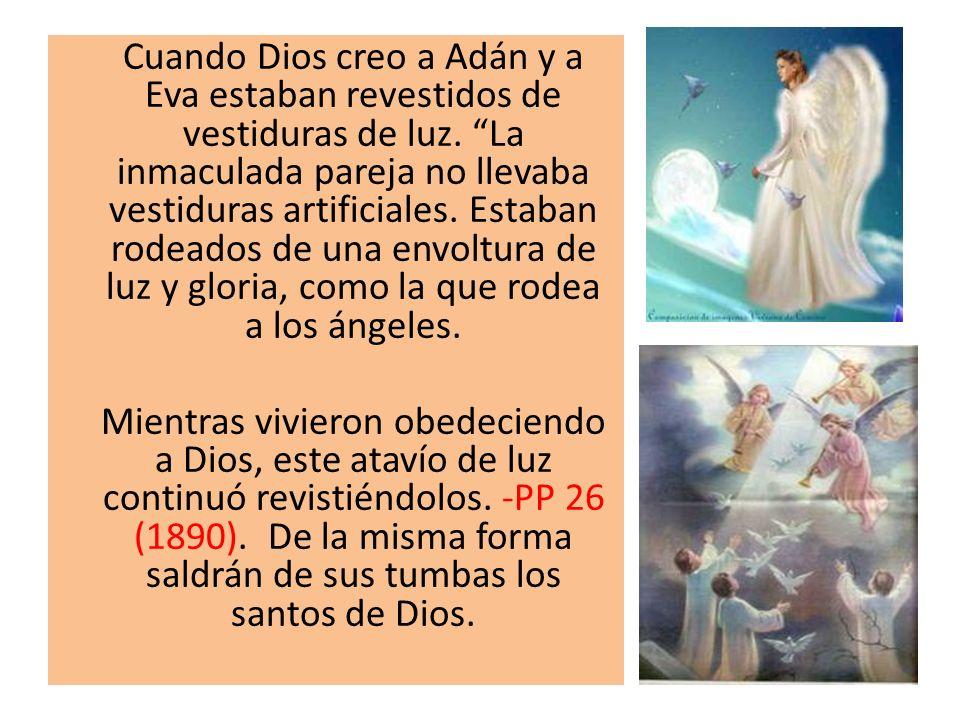 Cuando Dios creo a Adán y a Eva estaban revestidos de vestiduras de luz. La inmaculada pareja no llevaba vestiduras artificiales. Estaban rodeados de