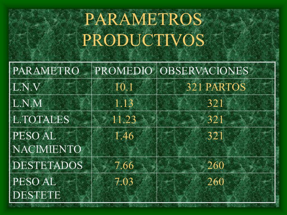 PARAMETROS PRODUCTIVOS PARAMETROPROMEDIOOBSERVACIONES L.N.V10.1321 PARTOS L.N.M1.13321 L.TOTALES11.23321 PESO AL NACIMIENTO 1.46321 DESTETADOS7.66260
