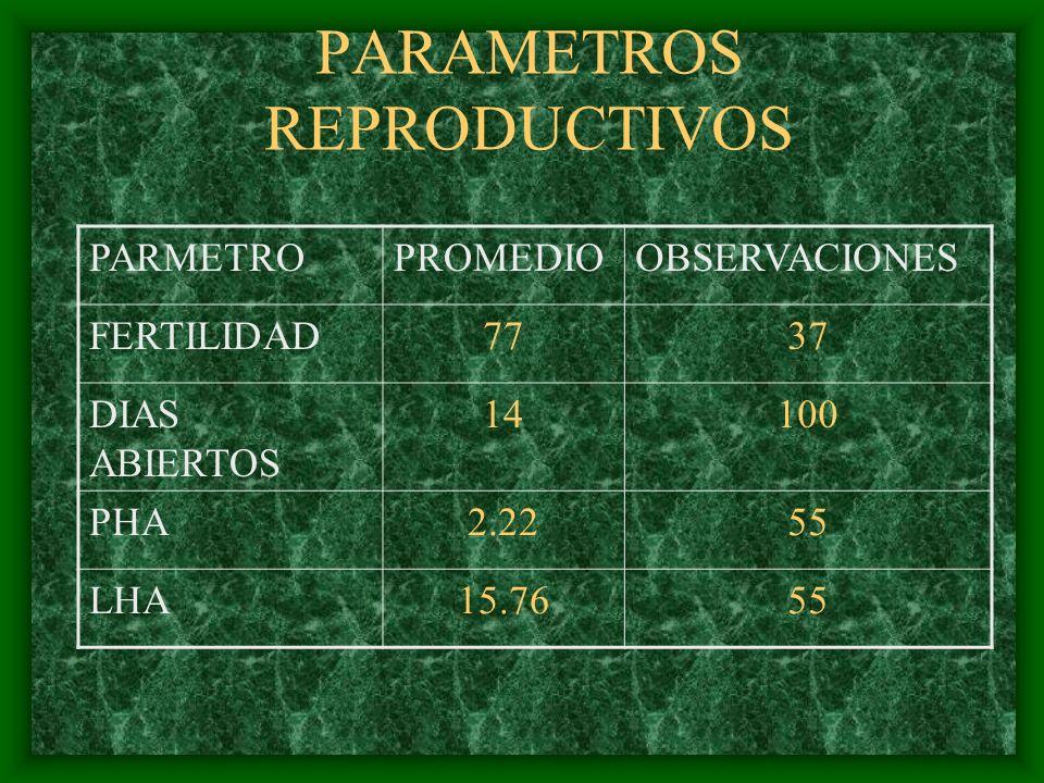 PARAMETROS REPRODUCTIVOS PARMETROPROMEDIOOBSERVACIONES FERTILIDAD7737 DIAS ABIERTOS 14100 PHA2.2255 LHA15.7655