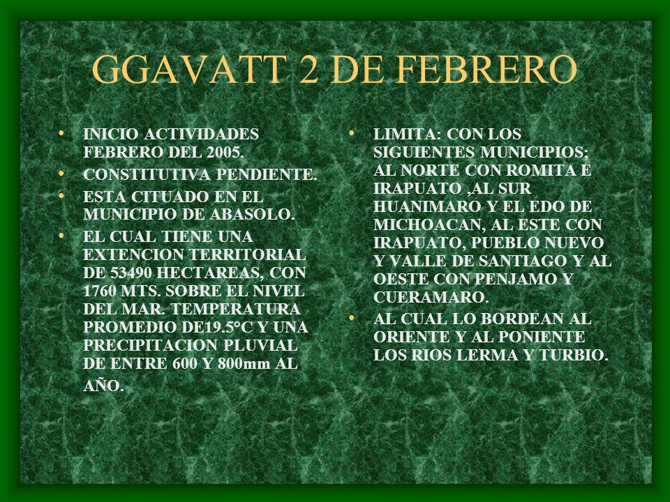 GGAVATT 2 DE FEBRERO INICIO ACTIVIDADES FEBRERO DEL 2005. CONSTITUTIVA PENDIENTE. ESTA CITUADO EN EL MUNICIPIO DE ABASOLO. EL CUAL TIENE UNA EXTENCION