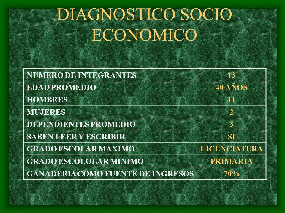 DIAGNOSTICO SOCIO ECONOMICO NUMERO DE INTEGRANTES13 EDAD PROMEDIO40 AÑOS HOMBRES11 MUJERES2 DEPENDIENTES PROMEDIO3 SABEN LEER Y ESCRIBIRSI GRADO ESCOL