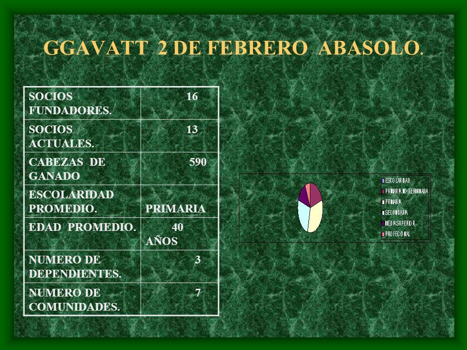 GGAVATT 2 DE FEBRERO ABASOLO. SOCIOS FUNDADORES. 16 SOCIOS ACTUALES. 13 CABEZAS DE GANADO 590 ESCOLARIDAD PROMEDIO. PRIMARIA EDAD PROMEDIO. 40 AÑOS NU