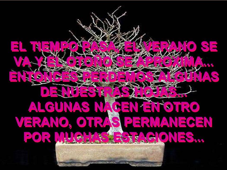 NO PODEMOS OLVIDAR A LOS AMIGOS DISTANTES … AQUELLOS QUE ESTÁN EN LAS PUNTAS DE LAS RAMAS DEL ÁRBOL, QUE CUANDO EL VIENTO SOPLA SIEMPRE APARECEN ENTRE