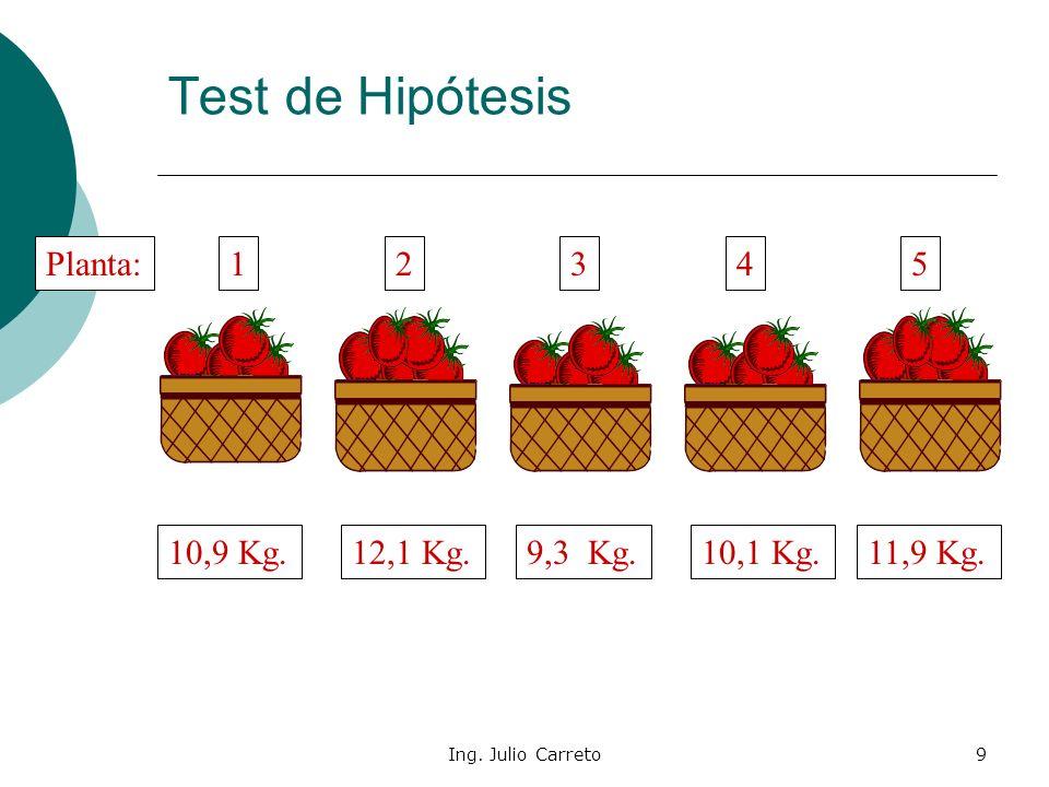 Ing. Julio Carreto9 Test de Hipótesis 10,9 Kg.12,1 Kg.10,1 Kg.9,3 Kg.11,9 Kg. 12543Planta: