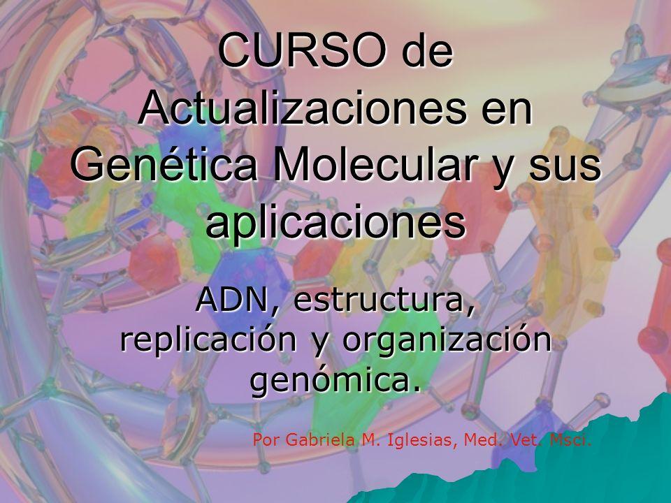 CURSO de Actualizaciones en Genética Molecular y sus aplicaciones ADN, estructura, replicación y organización genómica. Por Gabriela M. Iglesias, Med.
