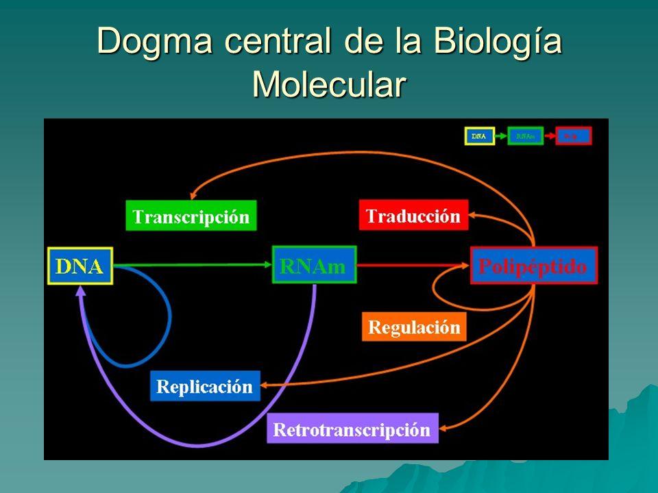 Dogma central de la Biología Molecular