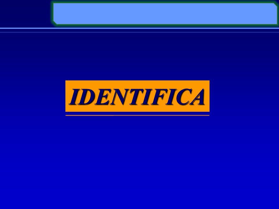IDENTIFICA