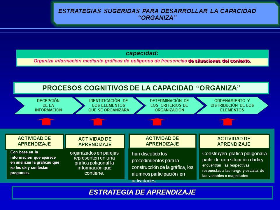 ESTRATEGIAS SUGERIDAS PARA DESARROLLAR LA CAPACIDAD ORGANIZA DETERMINACIÓN DE LOS CRITERIOS DE ORGANIZACIÓN ORDENAMIENTO Y DISTRIBUCIÓN DE LOS ELEMENT